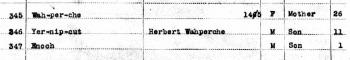 U.S.IndianCensusRolls1885-1940ForHerbertWahperche1903